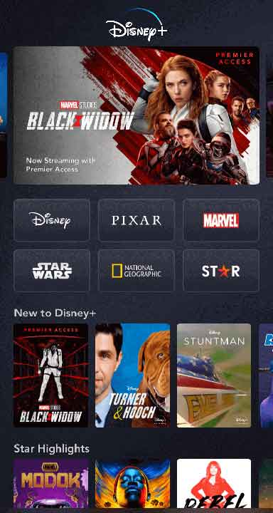 Watching Disney Plus in unsupported country on iOS device